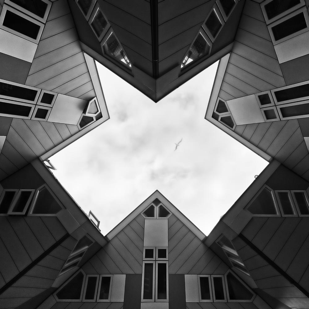 Roof study Rotterdam